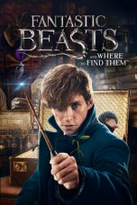 Nonton dan Download Film Fantastic Beasts and Where to Find Them (2016) Sub Indo ZenoMovie